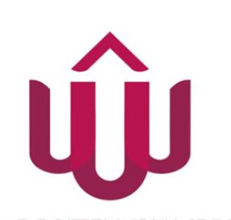 慶祝中外合資廣東合眾創盈融資租賃有限公司網站上線